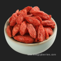 Bulk Wholesale Goji Berry From Ningxia 2018
