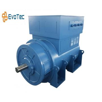 Three Phase High Voltage Generator Motor