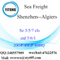 Shenzhen Port Sea Freight Shipping To Algiers