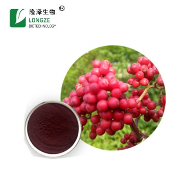 Organic elderberry extract powder with bulk supplement