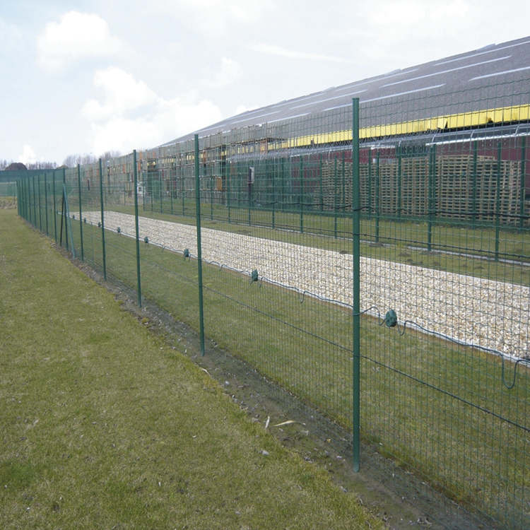 PVC Coated Holland Wire Mesh Fence 3D bending