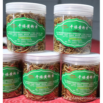 Low price Live Yellow Mealworm