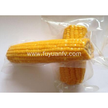 high grade sweet corn