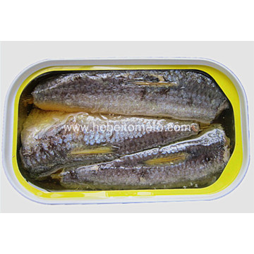 canned sardine in oil YOLI brands from Morocco