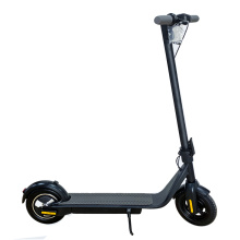 Folding Electric 350w Motor Scooter