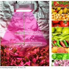 The best cob led grow light 2019