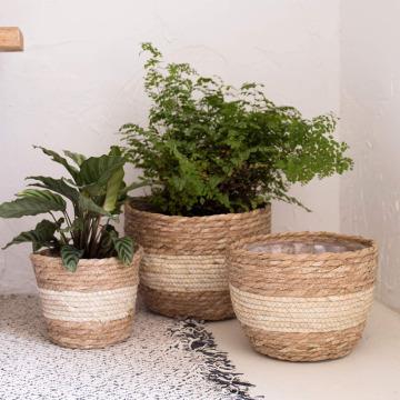 Dia. 18cm 22cm 25cm Rice White Large Straw Woven Natural Seaweed Floor Planting Basket Flower Pot