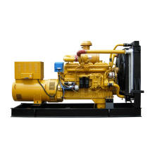 Diesel Generator Sets Powered by SHANGCHAI Engine