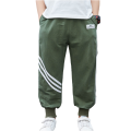 Boys Spring Stylish Casual Sports Pants