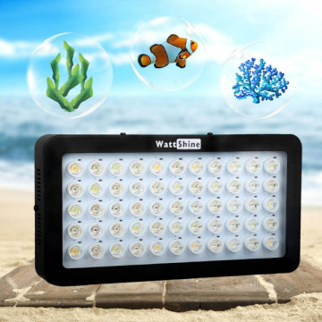100w LED Grow Lights für Korallenrifffische
