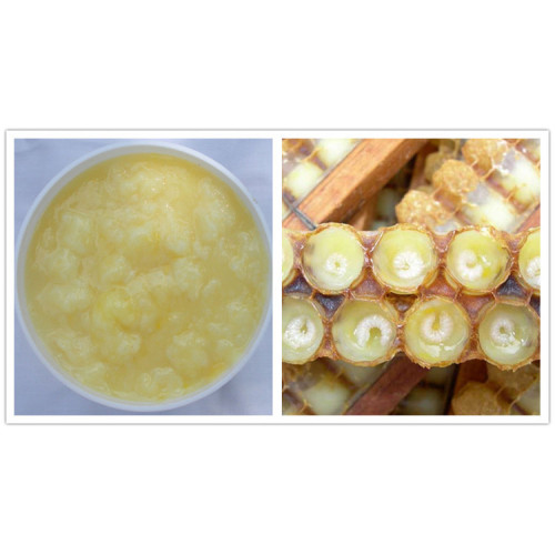 ISO Factory Supply Best Royal Jelly