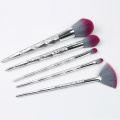 5 Pieces Shiny Plastik Handleand Makeup Brush Kit