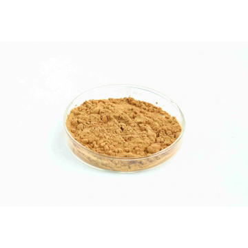 Digestive support Hawthorn Extract powder
