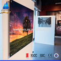 Tempered Pictures Silk Printed Decorative Glass