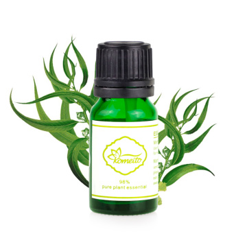 Wholesale Natural Pure Fragrance Essential Oil Set