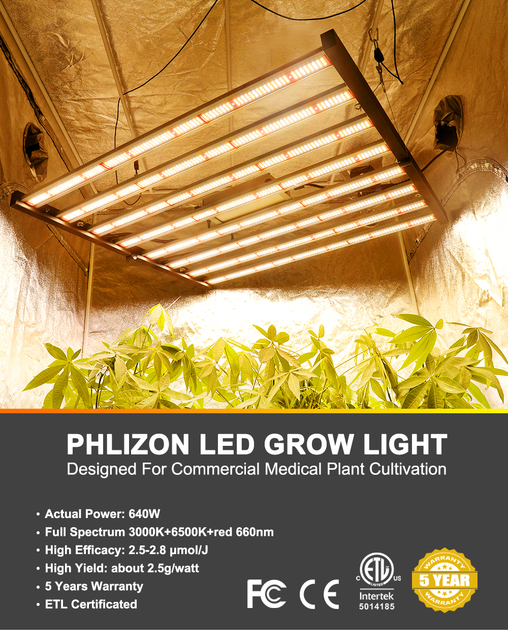 Phlizon Grow Lights