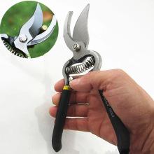 Professional 8 inch garden Scissors Fruit Tree Pruning Shears Bonsai Pruners Grafting Cutter garden tools