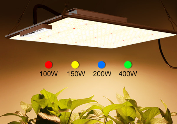 100W led growing lamp panel full spectrum veg bloom