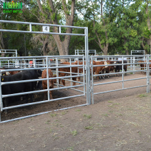 Used Metal Horse Fence Panels /Pipe Fencing Horses