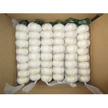 Different Packages Of Jinxiang Pure White Garlic
