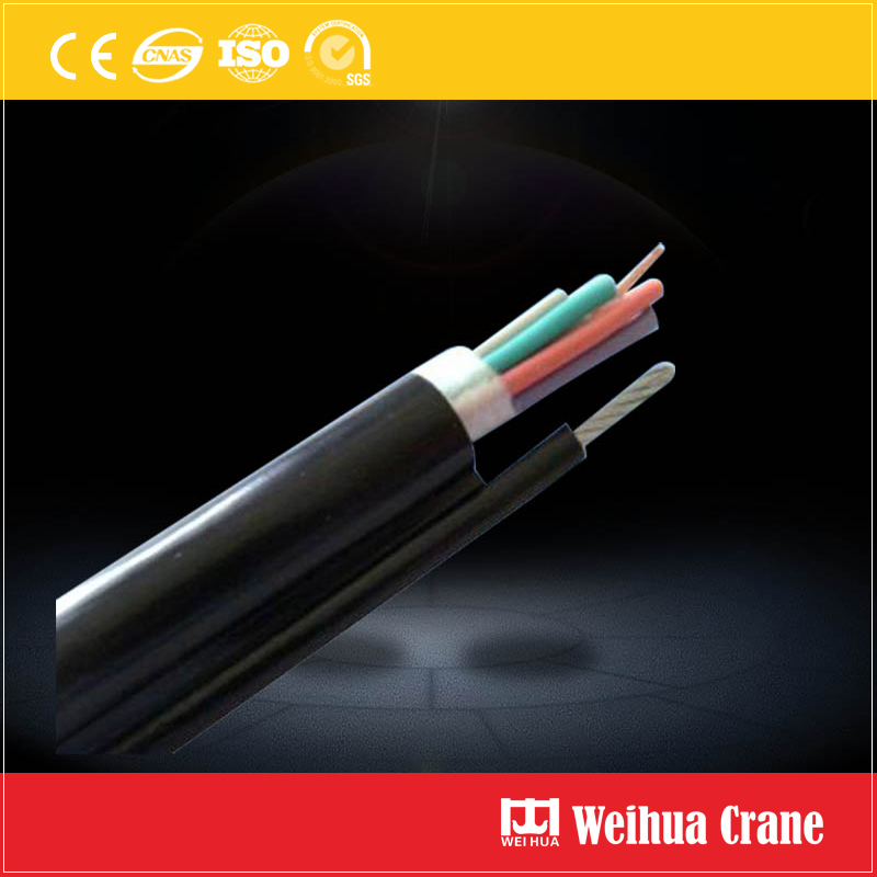Pendant Cable