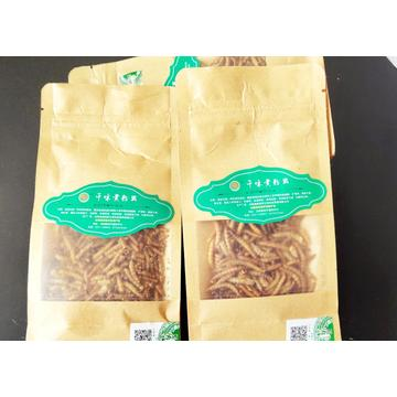 Dried yellow mealworms for pet