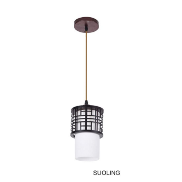 Chinese Style Retro indoor ceiling light