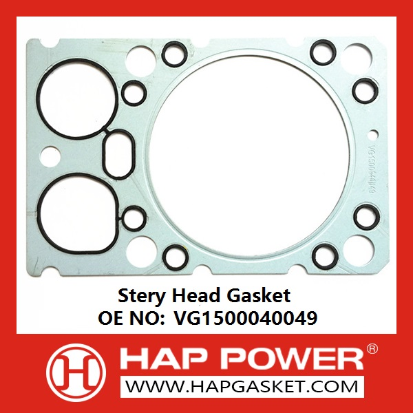 HAP-HD-019 Stery Head Gasket VG1500040049-126