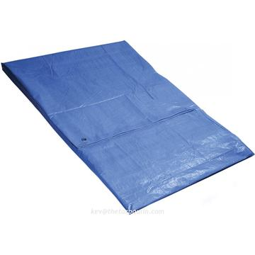 50gsm PE tarpaulin sheet with eyelets and rope