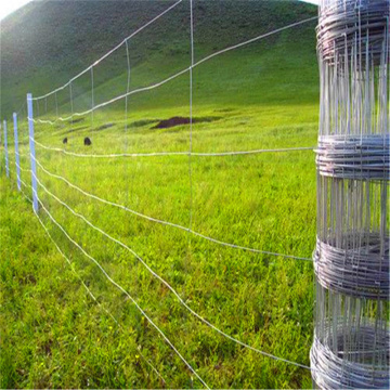 High Tensile goat fence