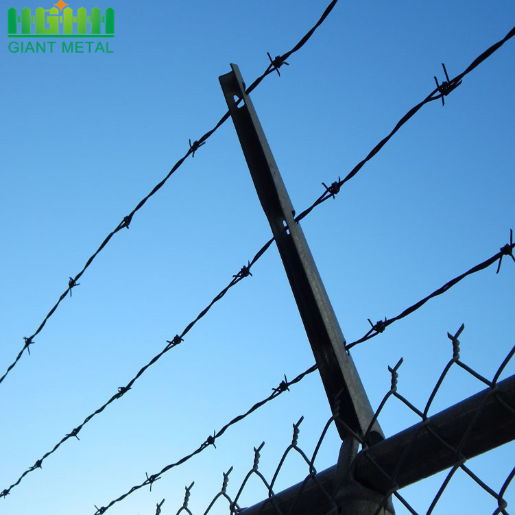 Hot dipped galvanized reverse twist barbed wire fence
