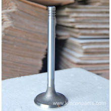 Engine Valves  226B