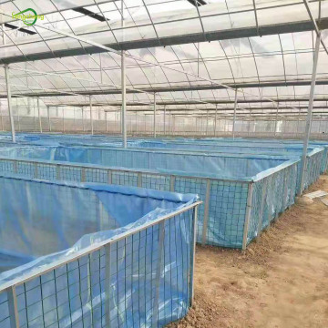 Plastic pond liner for fish farm