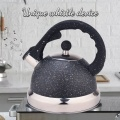 Black Frosted Stainless Steel Whistling Teapot