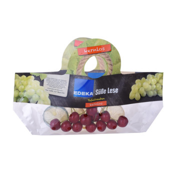 Recyclable Bag Fruit Packaging with Hang Hole