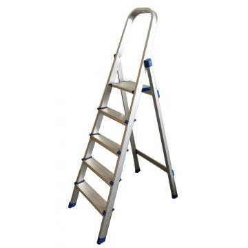 5 STEPS HOUSEHOLD LADDER