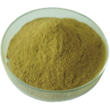 Chlorogenic Acid Green Coffee Bean Extract