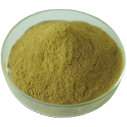 Green Coffee Bean Plant Extract
