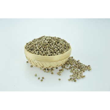 New Crop Hemp Seeds for Planting