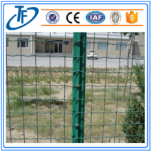 Welded Holland Wire Mesh/Wire Mesh Netting
