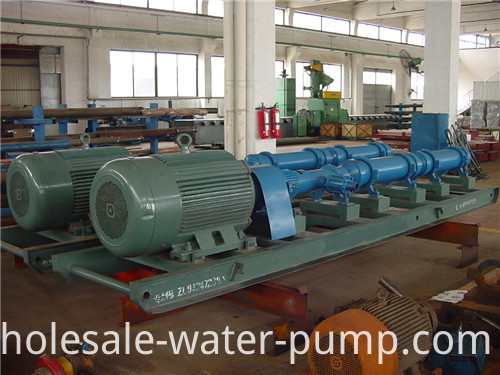 Single screw pump crude oil transfer pump.