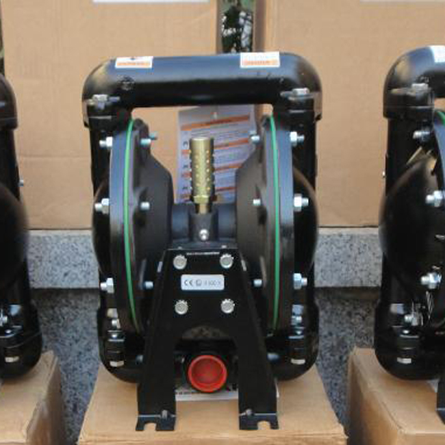 Diaphragm Pumps ARO Type (19)