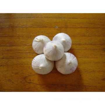 One Clove Solo Garlic From Yunnan Province
