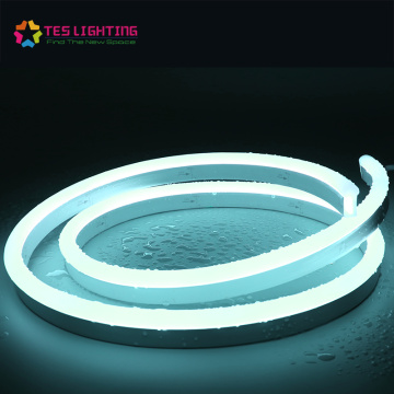Specialty Waterproof IP68 LED Neon Flex