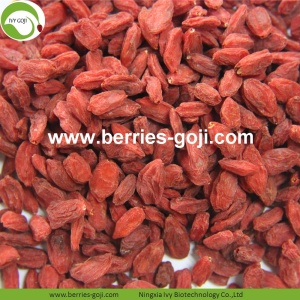 Wholesale Healthy Red Eu Standard Goji Berry