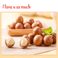 Hawaii Nut Pack, Queensland Nut Seed Package,10 pcs/lot Seed without Green Shell Raw Macadamia ,Crispy Plant