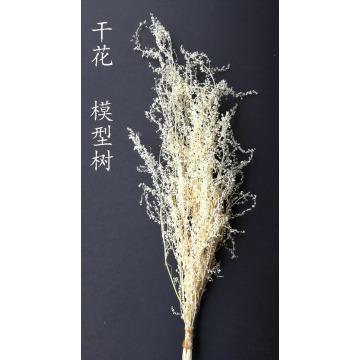 white Scene architectural model sand vegetation thorns quinoa military scene DIY production materials