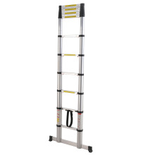 Soft close telescopic ladder