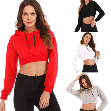 solid color long sleeves crop sweatshirt