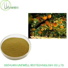 Grapefruit Seed Extract Powder 4:1 10:1